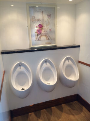 3+1 Luxury mobile toilet urinals